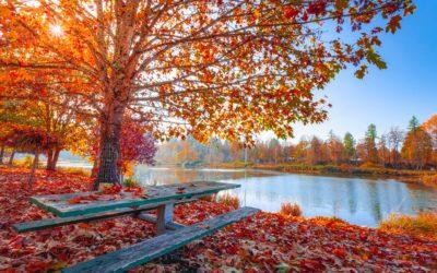 Managing A Season of Change